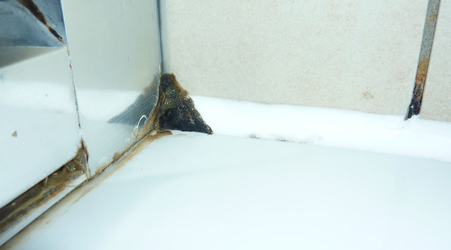 Mould has formed in the corner of this shower where water has become trapped